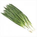 О пользе зеленого лука