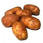 Картофель - лекарства в клубне