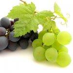 Ампелотерапия – лечение виноградом