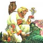 Легенды о травах, о растениях…