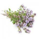 Побочные эффекты лекарственных растений