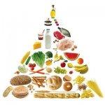 Калории и калорийность продуктов