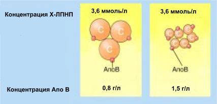 ли лпнп выше холестерина